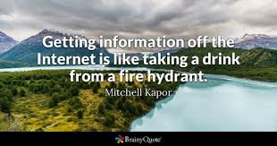 Internet Quotes Beauteous Internet Quotes BrainyQuote