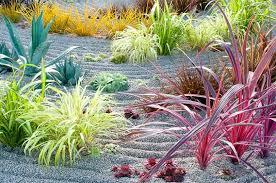 my beautiful zen garden