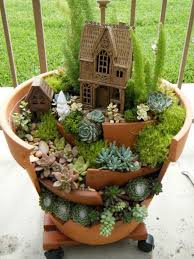 fairy gardens with succulents from