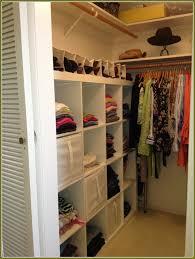 ikea closet organizer. Contemporary Closet Closet Organizer Ikea Amazing Organizers Canvas Cloth Canada Learnsome Co  Intended For 9  E
