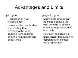 Lytic And Lysogenic Cycle Venn Diagram Lytic And Lysogenic Cycle Venn Diagram Magdalene Project Org