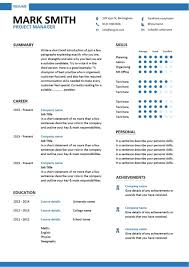 Modern Project Manager Resume template 1