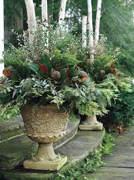 Small Picture Best 10 Winter container gardening ideas on Pinterest Winter