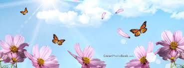 spring pink flowers erflies more facebook covers spring pink flowers erflies free facebook timeline profile cover nature