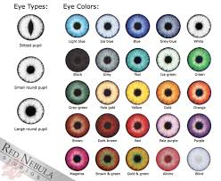 Iris Color Chart Eye Color Chart