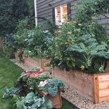 raised garden bed goals happen
