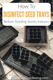 cleaning seed starting trays is very important if you re planning on reusing them for