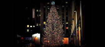 New Yorker Weihnachtsbaum 2015 Leuchtet Meine Tanne