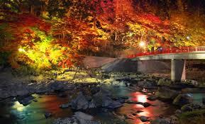 「秋 景色」の画像検索結果