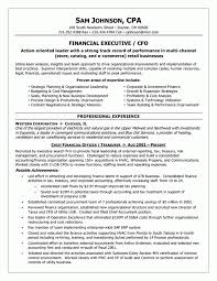 Internal Auditor Resume Objective Beautiful Auditor Resume Objective Pictures Inspiration Example 71