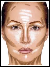 where to highlight where to highlight and contour by tess mclellan musely
