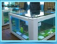 aquarium at office office desk aquarium