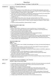 Training Director Resume Training Director Resume Samples Velvet Jobs 4