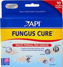 Fish Medication Chart Api Fungus Cure Anti Fungal Freshwater Fish Medication 10 Count