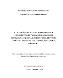 Evaluación del sistema agroforestal y monocultivo de palma africana (Elaeis  guineensis jacq ) establecidos por el proyecto LAPA en la región de Osa  Golfito, Puntarenas, Costa Rica