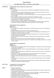 Senior Director Marketing Resume Samples Velvet Jobs