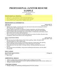 Sample Profiles For Resumes Delectable Profile On A Resume Radiovkmtk