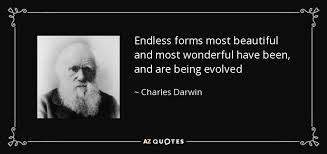 Endless Forms Most Beautiful Quote Best of Charles Darwin Quote Endless Forms Most Beautiful And Most