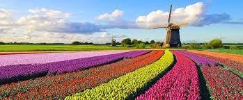 Auf dieser seite wird der erweiterte kader der nationalmannschaft нидерланды angezeigt. Reiseziel Niederlande Infos Und Tipps Adac