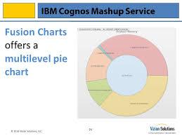 Cognos Pie Chart Ibm Cognos Mashup Service Screen Shots