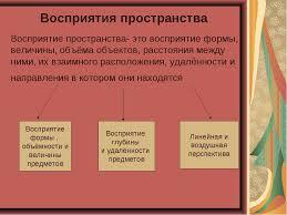 курсовая работа Формирование пространственного восприятия у  Курсовая работа пространственное восприятие