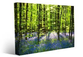 landscape wall art forest flowers spring