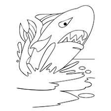 20 Stampabili Whale Disegni Da Colorare Il Vostro Bambino Amerà