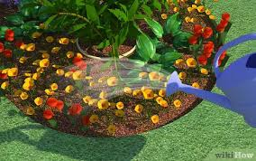 how to start a flower garden with