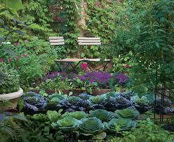 Small Picture Who says a kitchen garden cant be beautiful Fine Gardening