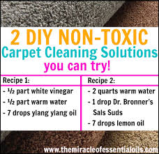got carpets in your home full of kids and pets you need to try these