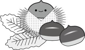 秋栗のイラスト無料イラスト