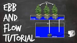 how to set up an ebb and flow diy hydroponics system flood and drain