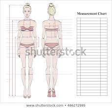 Full Body Measurement Chart Woman Body Measurement Chart Scheme Measurement Stock Vector
