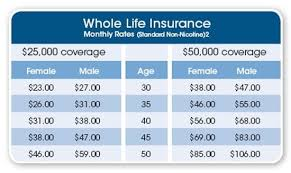 Cheap Whole Life Insurance Quotes Delectable Whole Life Insurance Quotes Best Quotes Ever