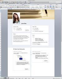 Facebook Resume Template Sample Resume Cover Letter Format