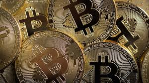 Bitcoin wallets keep a secret piece of data called a private key or seed, which is used to sign transactions, providing a mathematical proof that they have come from the owner of the wallet. El Salvador Becomes World S First Country To Make Bitcoin An Official Currency Technology News