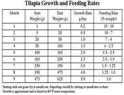 Wille Pille Tilapia Growth Chart