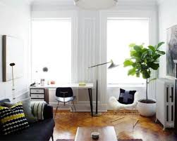 Decorate Your House Decorate Your House With Tall House Plants Wearefound Home Design