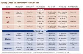Canadian Beef Grading Chart Quality Grade Standards For Beef Archives Umai Dry