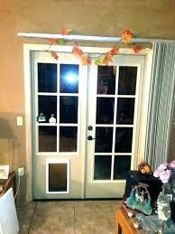 glass dog doors pet door glass insert exterior dog door systematic exterior dog door with built glass dog doors dog doors glass dog door geelong