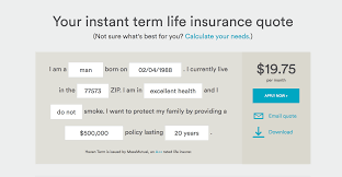 instant term life insurance quotes haven life insurance review fast term insurance
