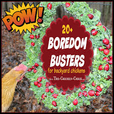 How To ChickenProof Your Garden  Modern FarmerHow To Keep Backyard Chickens