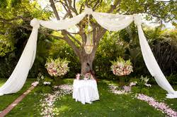 Back Yard Wedding Altar Presenting your wedding ceremony with true  whimsical charm and natural warmth, you cannot help but feel the love  simply radiating ...