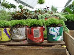 soda-cans recycled as little gift planters
