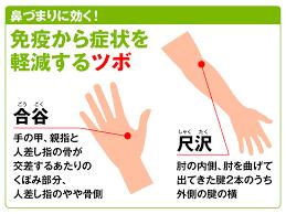 蓄膿症 膿 を 出す ツボ