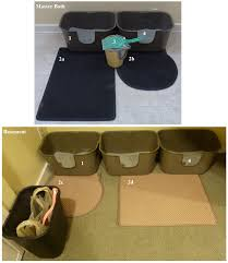 Litter Box Setup for Multiple Cats  Floppycats Version