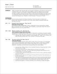 Marketing Consultant Job Description Resume Best Of Marketing Associate Job Description Moncleroutlet