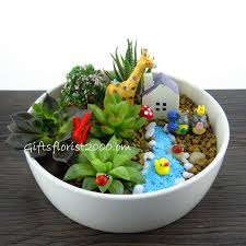 Small Picture From Tito Gregs Dish Garden Skill Competition Garden Dish Garden