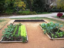 Small Picture Raised Garden Designs Garden Design Ideas