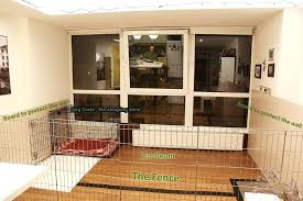 indoor fence for dogs fence fortifications indoor dog fence indoor fence for dogs dog